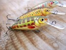 Dorado Invader 4cm Shad – crankbait review